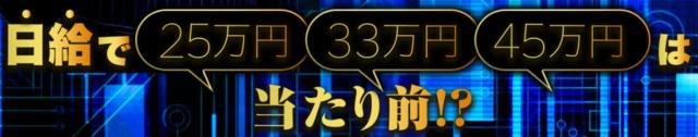 スマート・リターンFX・日給25、33、45万円.PNG